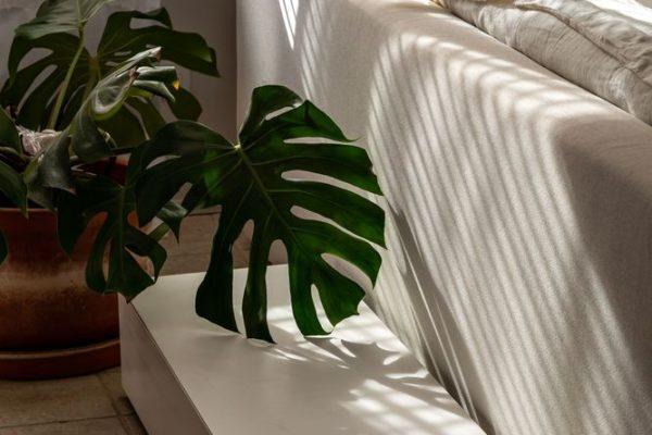 強調的處理方式是使室內設計裝飾獲得生動效果的唯一途徑